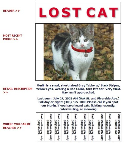 Lost-Cat-Flyer